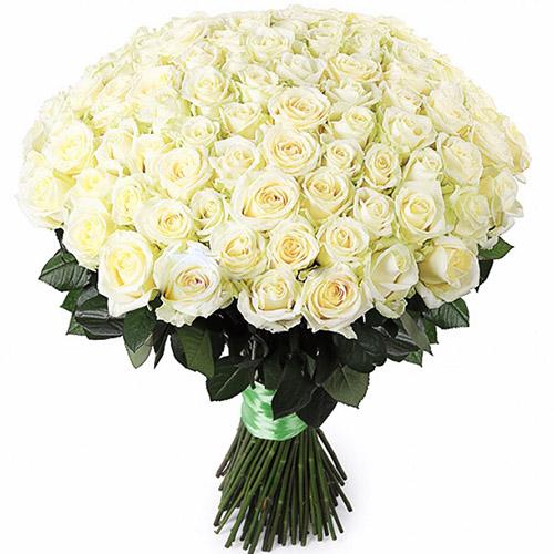Фото товара 101 біла троянда