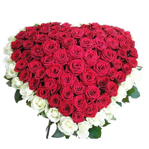 Фото товара 101 троянда серце - червона та біла