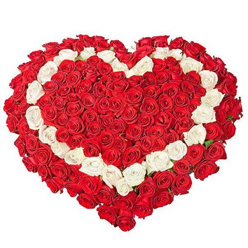 Фото товара 101 троянда серцем - червона, біла, червона