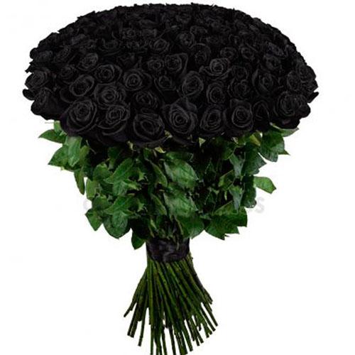 Фото товара 101 чорна троянда