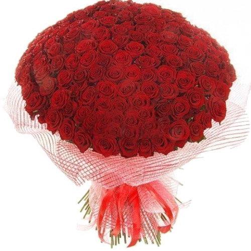 Фото товара 201 червона троянда