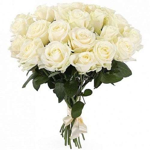 Фото товара 21 біла троянда