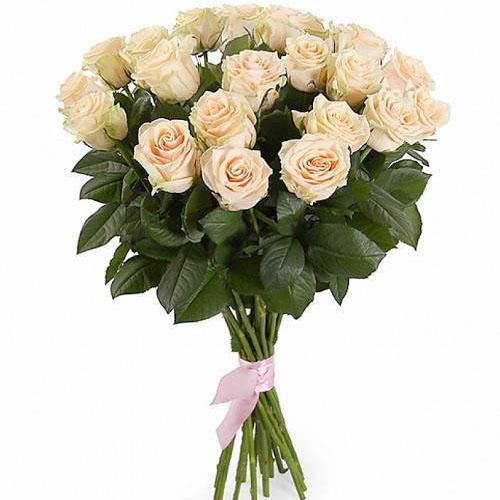 Фото товара 21 кремова троянда