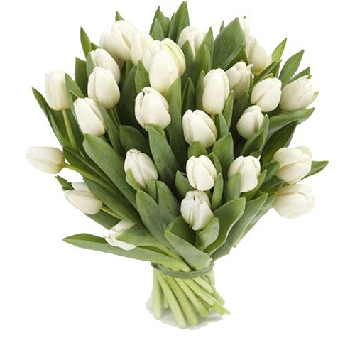 Фото товара 25 білих тюльпанів