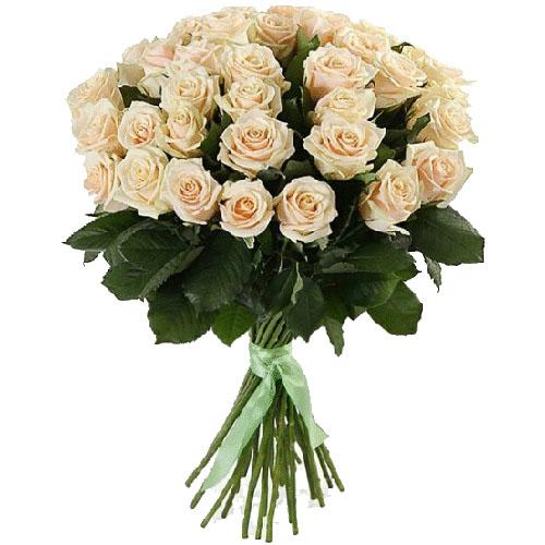 Фото товара 33 кремові троянди