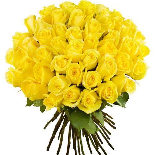 Фото товара 51 жовта троянда