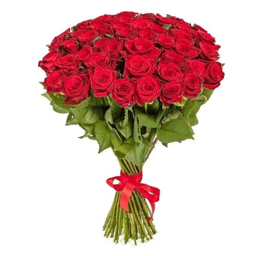 Фото товара 51 червона троянда