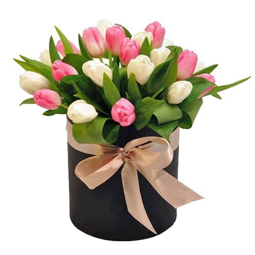 Фото товара 25 тюльпанів у коробці
