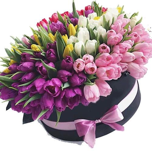 Фото товара 151 тюльпан у капелюшній коробці