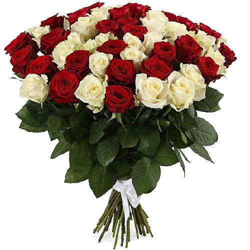 Фото товара 51 червона та біла троянда