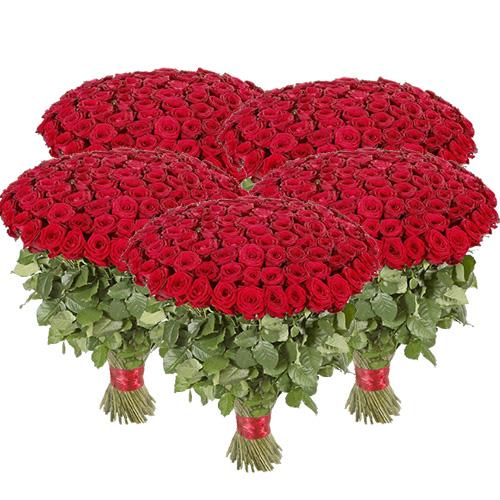 Фото товара 501 червона троянда