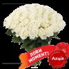 Фото товара 51 червона троянда (50см)